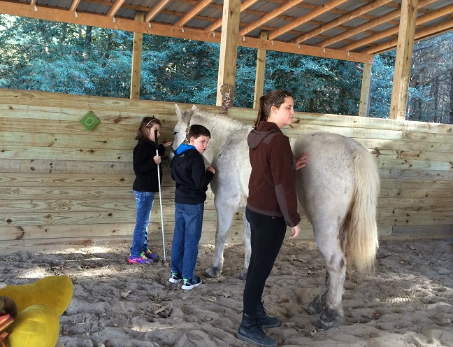 Tweens and teens at the 2015 Convention enjoyed grooming and riding horses.